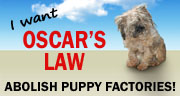I Want Oscar's Law - Abolish Puppy Factories!